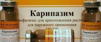 Препарат Карипазим при лечения межпозвоночной грыжи его эффективность. Источник: https://zdorovya-spine.ru/?p=870&preview=true © Журнал о заболеваниях спины