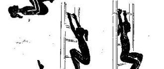 Комплекс упражнений при лордозе