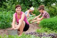 Нетрудная работа в огороде для будущих мам