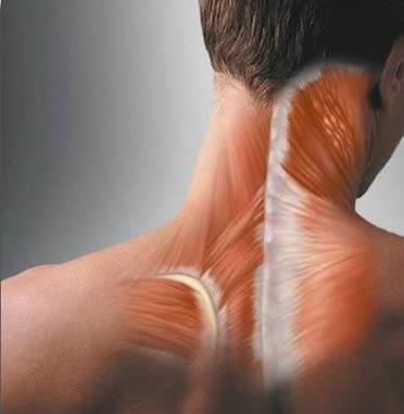 тянет шею и поясницу