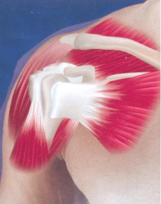 Изображение - Боли и хруст в плечевом суставе лечение Snimok-ekrana-2017-05-29-v-15.11.14